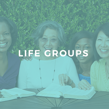 Life Groups kindred
