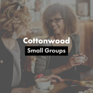 Cottonwood Small Groups volunteer image